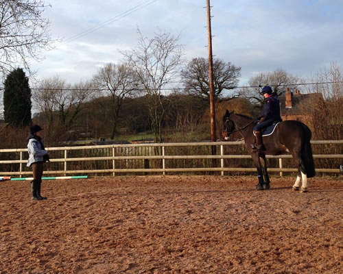 friendly horse instruction and support on site!